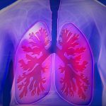 asthma and lungs